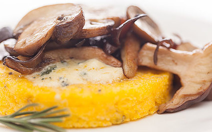 Polenta with Mushrooms and Cambozola Black Label
